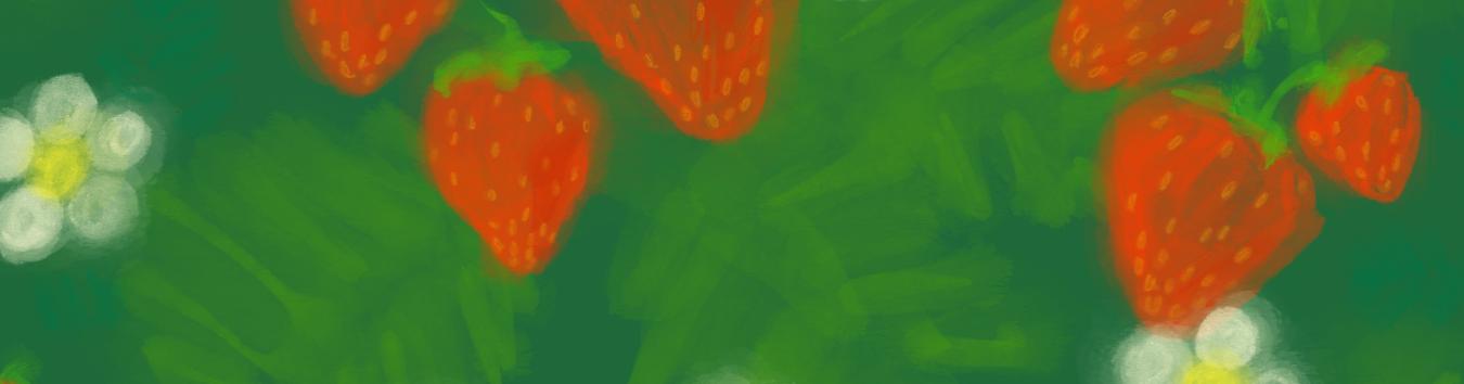 Erdbeerbeet